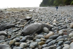 Mother's Day 2011 - Whiskey Creek Beach (17)