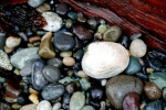 Mother's Day 2011 - Whiskey Creek Beach (8)